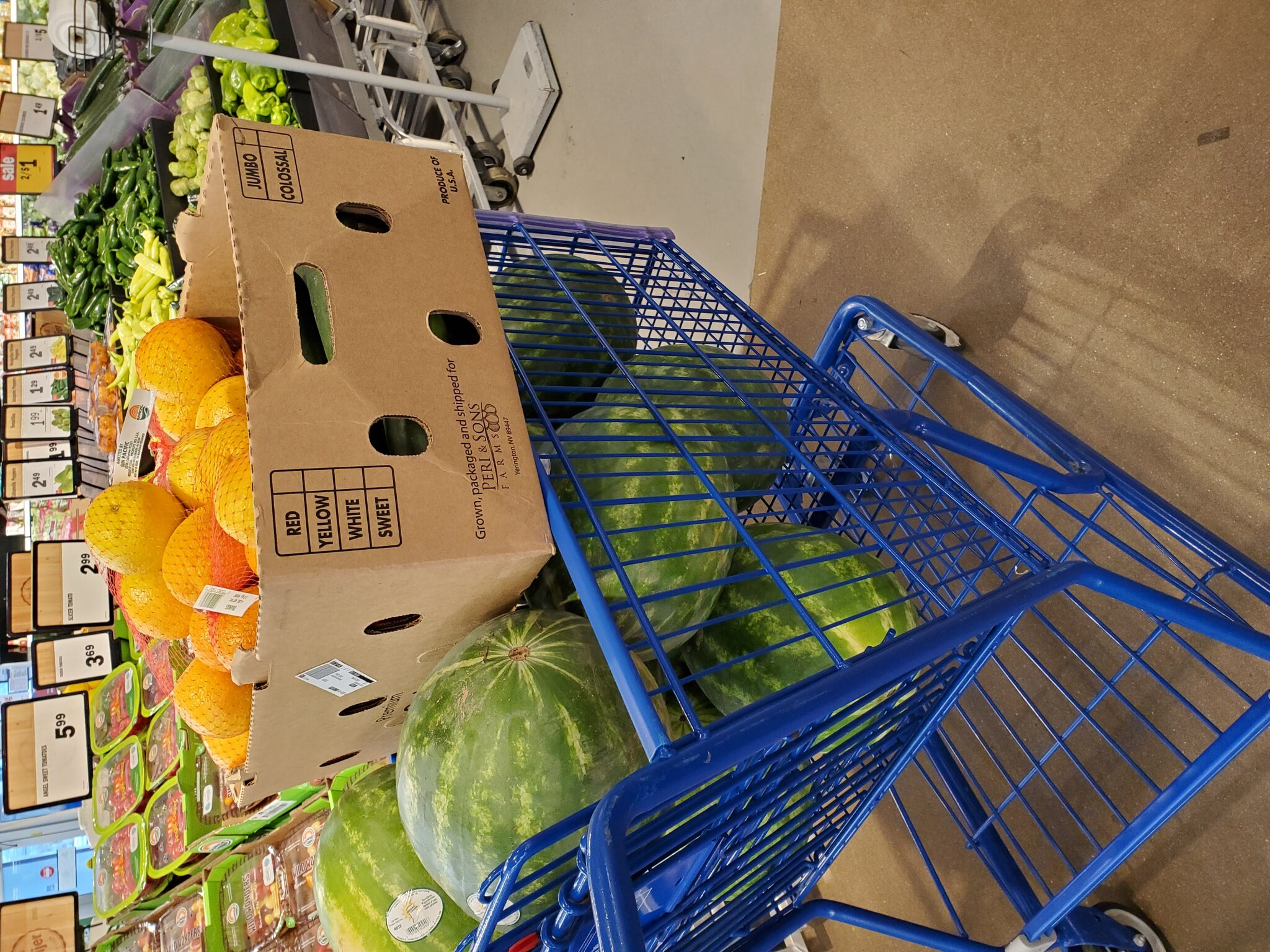 Cart Full of Watermelons, Oranges, and Cucumbers